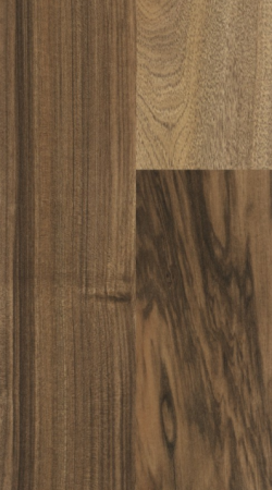 prof-series-7-australian-walnut